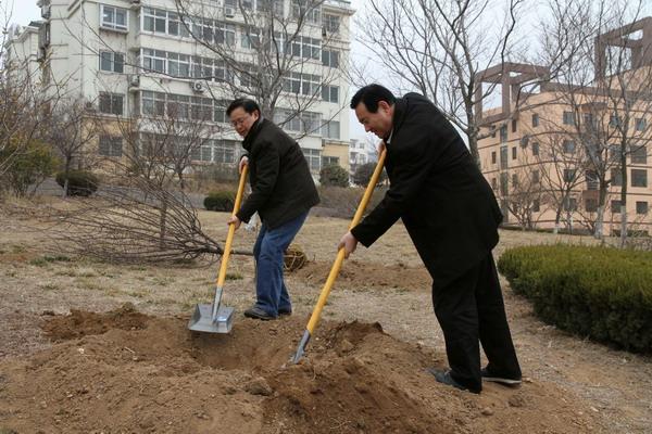 我校开展春季义务植树活动
